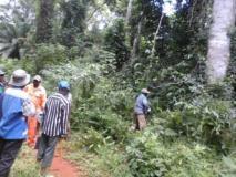 500 Hectares De Terrain Agricole À Louer À Mengang / Cameroun,, Akonolinga, Cameroon Real Estate