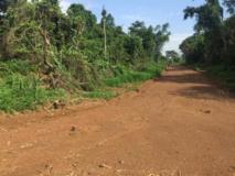 Terrains Titrés,, Douala, Cameroon Real Estate