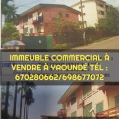 Immeuble Commercial À Vendre Yaoundé Bastos,, Yaoundé, Cameroon Real Estate