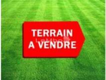 Terrain Titre A Vendre Yaounde Vers Usine Cimemcam- Nkolfun,, Yaoundé, Cameroon Real Estate