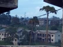 Terrain Titré Lotis À Vendre,, Yaoundé, Cameroon Real Estate