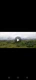 Terrain Titré De 1,8 Hectares En Vente À Proximité Du Stade De Japoma,, Douala, Cameroon Real Estate