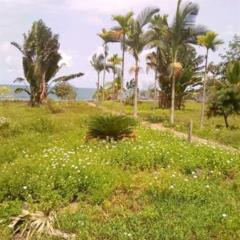 L'hôtel En Bordure De Mer À Vendre À Kribi...,, Kribi, Cameroon Real Estate