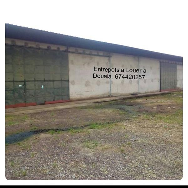 Location EntrepГґt a Douala MICHAEL REAL ESTATES AGENCY