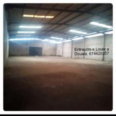 Location Entrepôt A Douala MICHAEL REAL ESTATES AGENCY