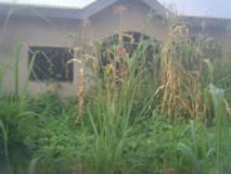 Villas En Cours De Finition A Vendre,, Yaoundé, Cameroon Real Estate