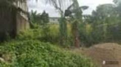 Terrain Titré À Vendre À Lendi Bon Prix,, Douala, Cameroon Real Estate