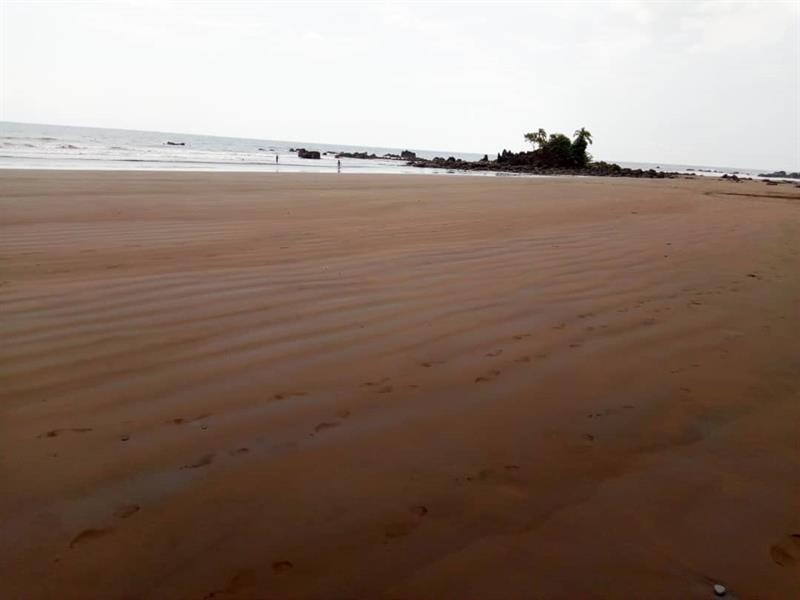 Vente Terrain de Plage 5000m2 Titre a Limbe MICHAEL REAL ESTATES AGENCY