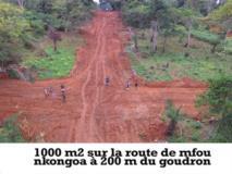Terrain À Vendre Très Bon Prix,, Yaoundé, Cameroon Real Estate